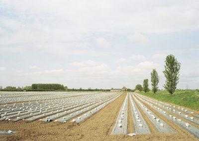 farm-copy