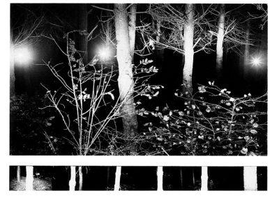 night-4-copy